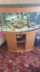 Juwel vision 180 liters bowed fish tank 3ft × 2ft