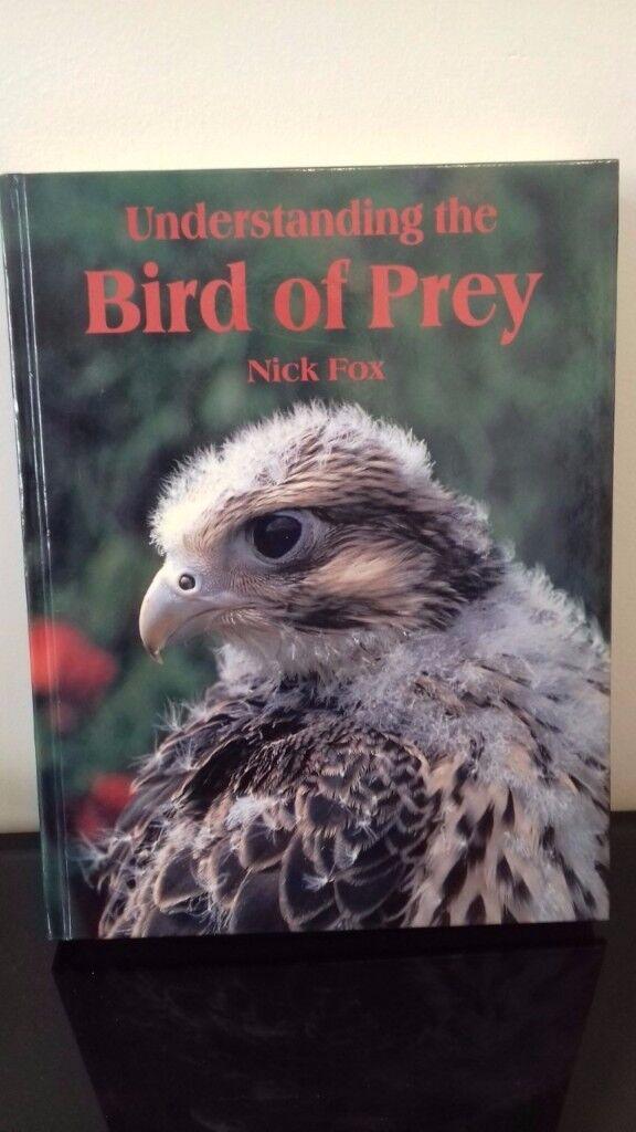Understanding the Bird of Prey by Nick Fox