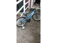 20inch wheel apollo mountsin bike with stabilisers