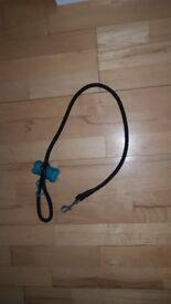 Dog rope lead