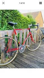 Raleigh Record Team Ti replica