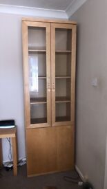 Storage unit/cabinet & tv stand