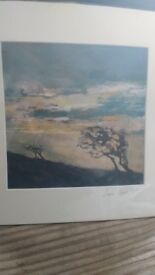 Limited Edition Print ~ Linda Irwin ~ Scene from Bodmin Moor