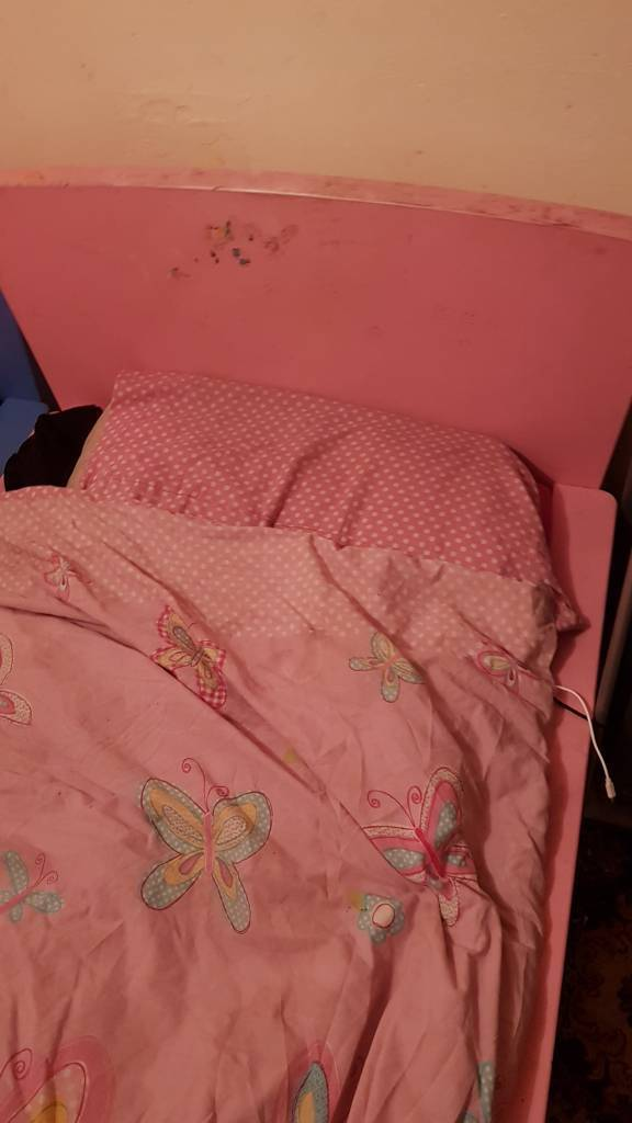 Toddler pink bed