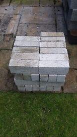Fire Clay Bricks (47 bricks)