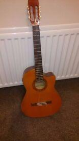 Classical guitar (accoustic/electirc)