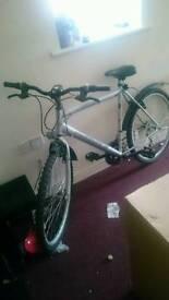 Bike (hardly used)
