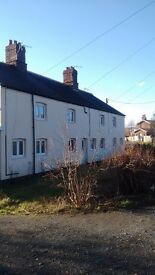 one bedroom country cottage , close to Mold convenient Wrexham &Chester