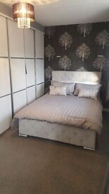 2 bed modern decor semi detached house Pelaw (gateshead) to rent £475 per month