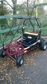 Go kart 2 seater, seat belts safe, petrol engine.