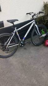 Claudbutler pine lake bike