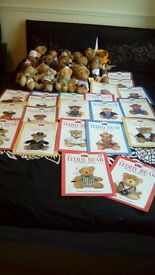 The Teddy Bear Collection x 21 bears and magazines in good condition.