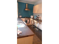 2 Bedroom House with Garden, DSS OK, Mins to Bentley High Street and Station