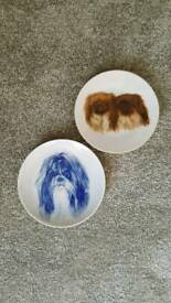 Pekineas and shih-tzu wall plates