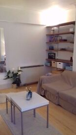 Huge and lovely 1 bedroom in Holborn