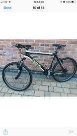 Form sterndale 4.0 bike