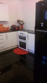 IMMACULATE 2 BED PENGAM GREEN looking for 3 or 4 bed Council