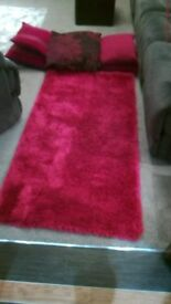 Shaggy Rug with Assortment of cushions