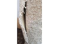 Carpet Remnant Cream Ivory 81cm x 142cm Thick pile saxony hessian back