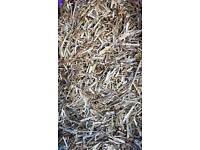 Bale of rape straw shavings animal horse chicken bedding