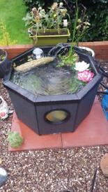 Outdoor pond for sale