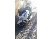 Honda Forza 300 £1750