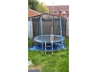 Trampoline for free.