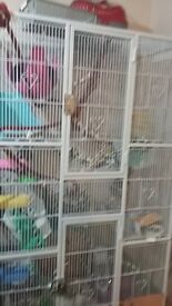 SWAPS Rat cage only No stand included