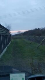 To Rent-Field/Paddock,Manea,Cambridgeshire(near Chatteris/March) 2 acres (stable/store option)TO LET