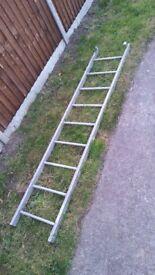 9 rung ladder