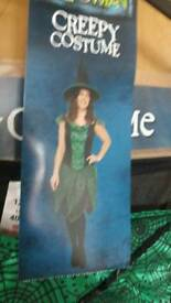 Witch dress, hat, wig & broomstick