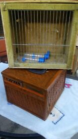Pigeon and bird box