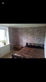 Lovely double room for decent person