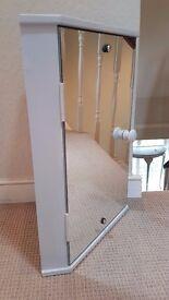 Corner bathroom mirrored cabinet