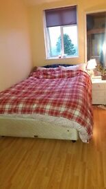 Double bedroom in cosy relaxing house; convenient spot, countryside views, Dog friendly