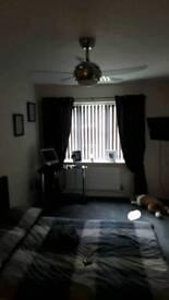 Remote control ceiling chrome fan