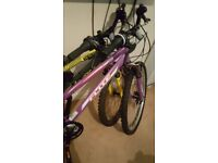 Flite womens mountain bike with front suspension