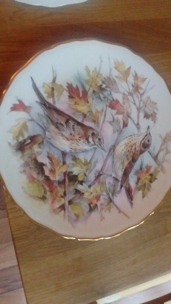 royal albert bone china full set garden birds series
