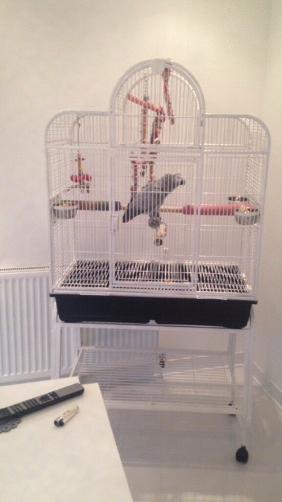 Large White Bird Cage On Wheels Suitable For Parrot African Grey
