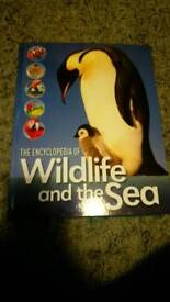 Wildlife and the sea encyclopedia rrp £50