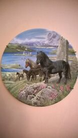 "2 collectable Davenport plates. ""Britain's Wild Ponies"" collection. Original boxes & certificates"