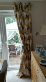 Long Eyelet Curtains, Elements, Emmott Ochre by Dunhelm