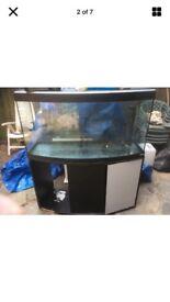 Large fish tank quick sale