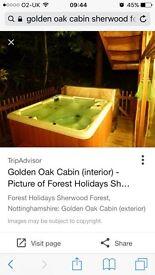 Selling short break in golden oak cabin sherwood forset Nottingham