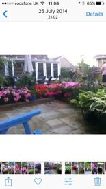 Conservatory for sale - 6m x 3m
