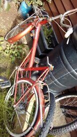 Raliegh twenty shopper bike (old)