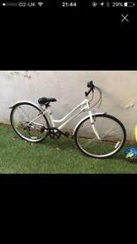 White female professional bike