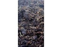 Manure / Horse / Cow / 2yr Rotted