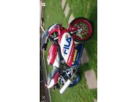 Ducati 620ff fila race colours