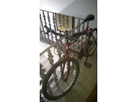 26'' Shimano Bike